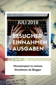 Besucherzahlen und Einnahmen meines Blogs im Juli 2018